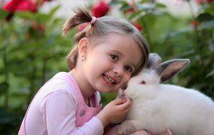 טיפול בארנבים
